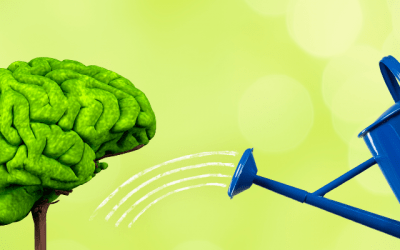 Brain Health – What you need to know.